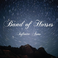 Cover of the track Infinite Arms