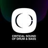 Couverture de l'album Critical Sound of Drum and Bass