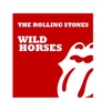 Cover of the track Wild Horses