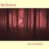 Cover of the album Lass es leuchten