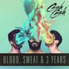 Couverture de l'album Blood, Sweat & 3 Years