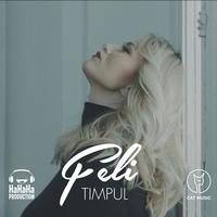 Couverture du titre Timpul - Single