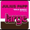 Cover of the track Bole Bantu