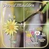 Cover of the album David Madden & Passeiros