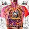 Couverture de l'album Prototypes and Painkillers