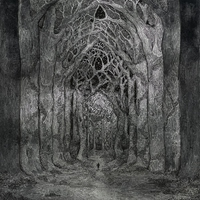 Cover of the track Within the Darkness Between the Starlight