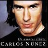 Cover of the track A Orillas Del Rio Sil