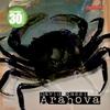 Couverture de l'album Arahova (Remixes)