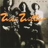Couverture de l'album Dixie Rock