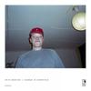 Couverture de l'album Horses in Cornfield - EP