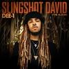 Cover of the album Slingshot David