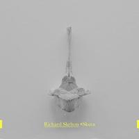 Cover of the track *Skura