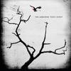 Couverture de l'album The Airborne Toxic Event (Deluxe Edition)
