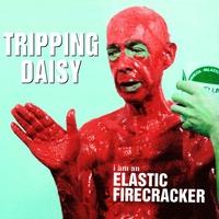 Couverture du titre I Am an Elastic Firecracker