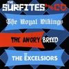 Couverture de l'album The Surfites & Co.