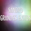 Cover of the album Sandro - Grandes Éxitos