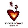 Cover of the track Včielka