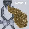 Couverture de l'album Santogold