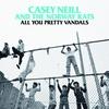 Couverture de l'album All You Pretty Vandals