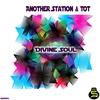Cover of the album Divine Soul - Single