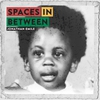 Cover of the album Spaces-In-Between