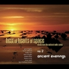 Couverture de l'album Best of Hearts of Space, No. 2: Ancient Evenings (Music from the National Radio Series)