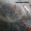 Couverture de l'album Circadian
