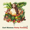 Cover of the album Natty Farming