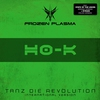 Couverture de l'album Tanz die Revolution (International Version)