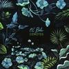 Couverture de l'album Cenotes - EP