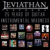 Couverture de l'album 25 Years of Guitar Instrumental Madness