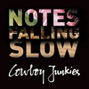 Cover of the album Notes Falling Slow