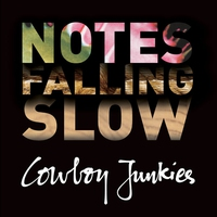 Cover of the track Notes Falling Slow