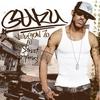 Couverture de l'album Guru Version 7.0 - The Street Scriptures