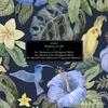Couverture de l'album Numero 10 - Single