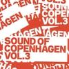 Cover of the track Inden Du Falder I Søvn (Lulu Rouge Edit)