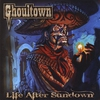 Cover of the album Life After Sundown