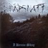 Cover of the album I denna skog