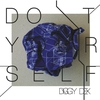 Cover of the album Do it Yourself