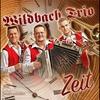 Couverture de l'album Wildbach Trio Zeit