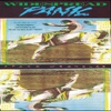 Cover of the album Space Wrangler