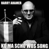 Cover of the album Ko ma scho wos song - Single
