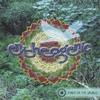 Cover of the album Flight of the Urubus