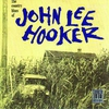 Couverture de l'album The Country Blues of John Lee Hooker (Remastered)
