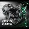 Cover of the track Ravistettava ennen käyttöä