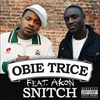 Couverture de l'album Snitch - Single