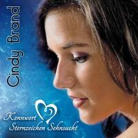 Couverture du titre Kennwort Sternzeichen Sehnsucht - Single