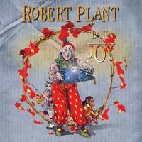 Couverture du titre Band of Joy