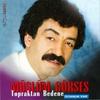Couverture de l'album Topraktan Bedene