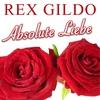 Couverture de l'album Absolute Liebe